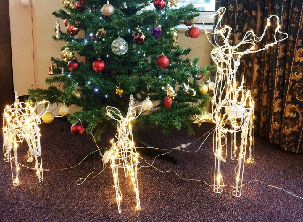 Visitors to Broadoaks for Christmas